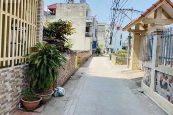 Bán 90m2 Đông Dư, Gia Lâm đường ô tô 4 chỗ, ngay cầu Thanh Trì, giá cực rẻ