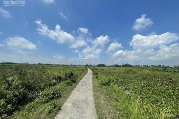 Bán lô đất 93m2, MT 5m khu dân cư Tiểu Trà, đường Trần Bá Lương, phường Hưng Đạo, quận Dương Kinh