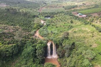 55000m2 đất ôm trọn 2 thác siêu đẹp - giá đầu tư đảm bảo mua lãi ngay