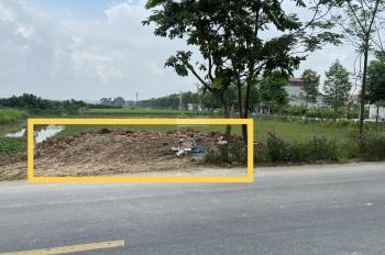 Bán đất nông nghiệp mặt đường chính đường liên tỉnh 420 đã chuyển đổi lên trồng cây lâu năm tại HN