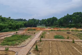 Chính chủ cần bán mảnh đất 7500m2 tại Samsung Thái Nguyên 4,5 triệu/m2