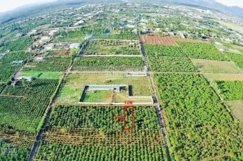 Cần bán 528m2 đất phường Yên Thế, Plei Ku