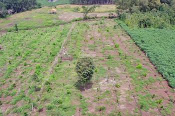 Bán đất vườn cây ăn trái + view Suối Lớn