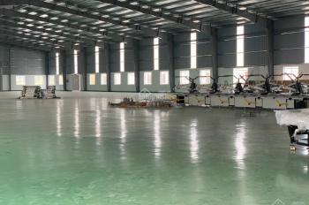 Cho thuê nhà xưởng tại khu đất công nghiệp Alpha nằm trên đường gom cao tốc 5B Hà Nội- Hải Phòng