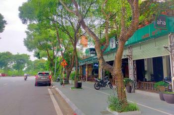 Bán đất phố Ái Mộ, Long Biên, 192m2 MT 9.5m, Kinh doanh siêu đỉnh, nhỉnh triệu đô 0975620983