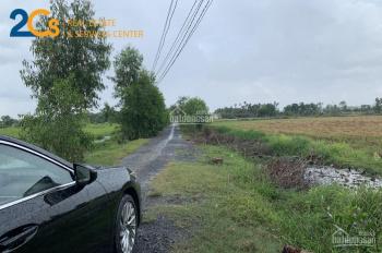 2cs đã bán đất thổ vườn 1,25tr/m2, KV1, Thị Trấn Đức Hòa, Long An