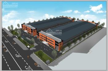 Chính chủ cho thuê văn phòng nhà xưởng mới xây dựng, KCN Quế Võ III - Bắc Ninh