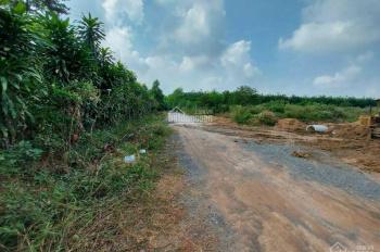 Bán đất SKC đường HL409 - Tân Hiệp - Tân Uyên. DT 2,3ha