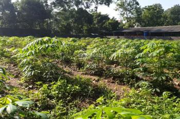 Chính chủ bán 9 lô đất 1000 - 5000m2 đất lô góc, mặt đường, sổ đỏ tại Cẩm Lĩnh, Ba Trại, lân cận