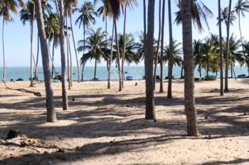 Hoa hậu đất sát biển còn sót lại tại Phan Thiết, giá siêu hời - LH anh Hùng 0936371676