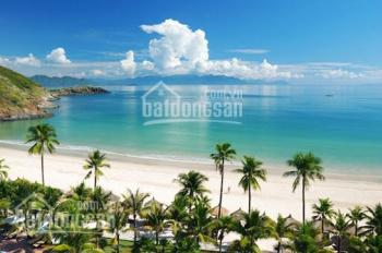 Gia đình tôi cần bán dự án hơn 20hecta ở mặt biển và mặt đường lớn ở Bãi Trường, Phú Quốc