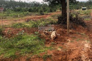 Chính chủ cần bán đất mặt tiền phường thắng lợi - thành phố Kon Tum