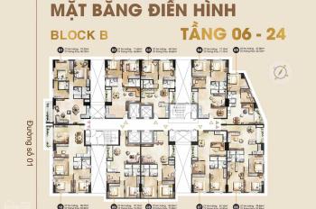 Hưng Hưng Thịnh độc quyền giỏ hàng căn hộ Paris Hoàng Kim, nhiều căn đẹp
