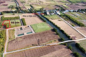 Đất vườn Phước Khánh xe hới tới tận đất sổ riêng giá chỉ hơn 1tr/m2: 0865992269