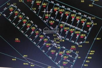 Bán đất đấu giá Làng Cam, Cổ Bi, Gia Lâm, DT 81m2 - 90m2 đường rộng 8m có vỉa hè vị trí kinh doanh