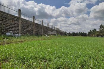 Bán đất Bùi Công Trừng, Nhị Bình, Hóc Môn, 5000m2, giá 3 triệu/m2