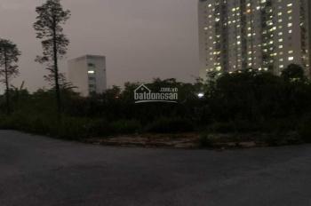 Chính chủ bán biệt thự 300m2, mặt tiền 12m, view vườn hoa - công viên nước