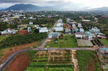 Chính chủ cần bán đất trung tâm TP Bảo Lộc, vị trí vàng  cho nhà đầu tư