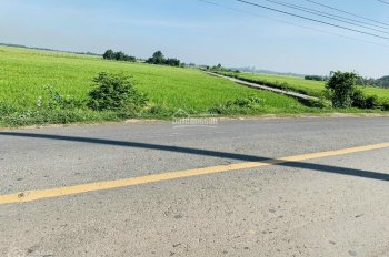 Bán đất 3 mặt tiền Tỉnh Lộ 7, xã Thái Mỹ, tổng: 10.180m2(có 6.500m thổ cư)
