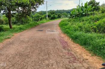 Bán đất Xuân Lộc, Suối Cao, Đồng Nai