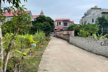 Chính chủ bán nhanh lô đất 427.1m2 - thôn Cầu Chính - Tân Dĩnh - Lạng Giang - Bắc Giang