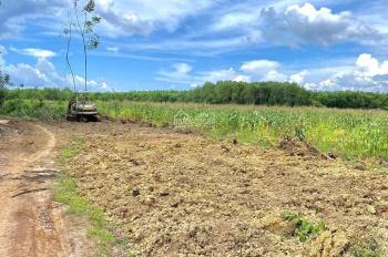 Cần bán 2,1 mẫu, đất 2 mặt tiền dài 215m, khu dân cư, gần TL766, tại Xuân Thành, Xuân Lộc, Đồng Nai