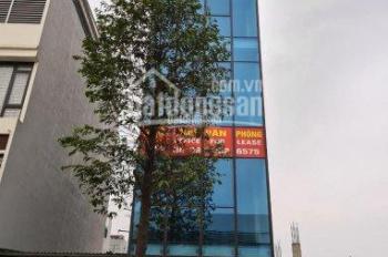 Cho thuê văn phòng nhà 7 tầng có thang máy đường Ngô Thì Nhậm