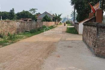 Chính chủ cần bán lô đất tại Huyện Tam Nông, Tỉnh Phú Thọ