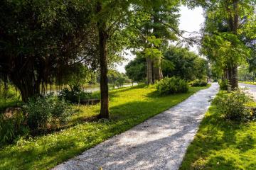 Thiên nhiên tại Ecopark