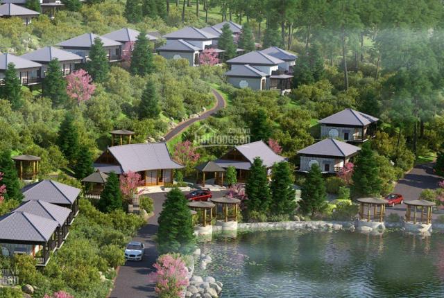 Hot! Đầu tư ngay giai đoạn 1 dự án Hasu Village & Resort để được ưu đãi tốt nhất từ chủ đầu tư