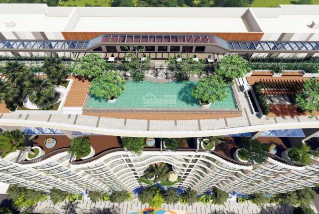 Chủ đầu tư mở bán đợt 1 căn hộ Aria view biển Vũng Tàu. Quý 3/2020 nhận nhà hoàn thiện