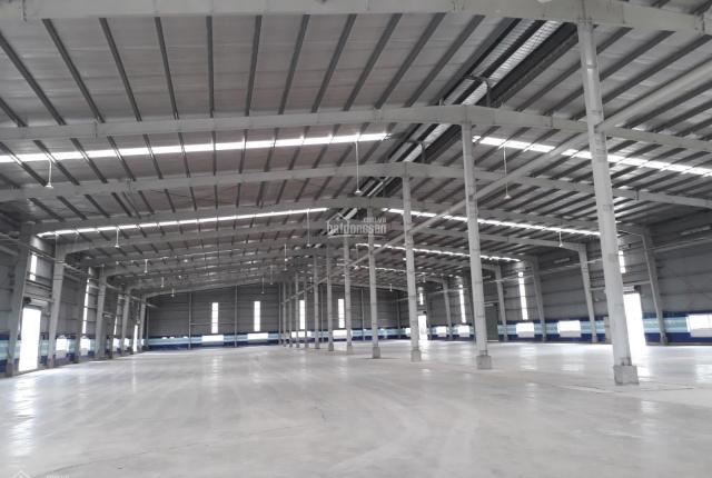 Cho thuê đất, nhà xưởng xây sẵn tại KCN Thuận Đạo, H. Bến Lức, T. Long An