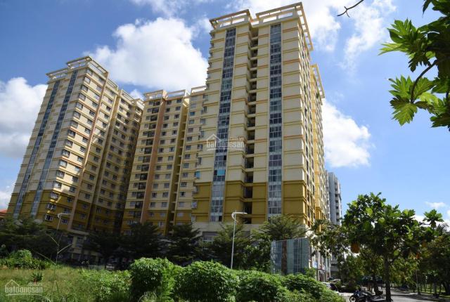 Chính chủ cần bán chung cư Petroland - 0902454669, giá tốt nhất Q2