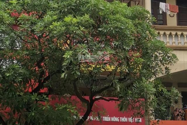 Chính chủ cho thuê nhà 133 Lê Thanh Nghị, đã có sổ đỏ
