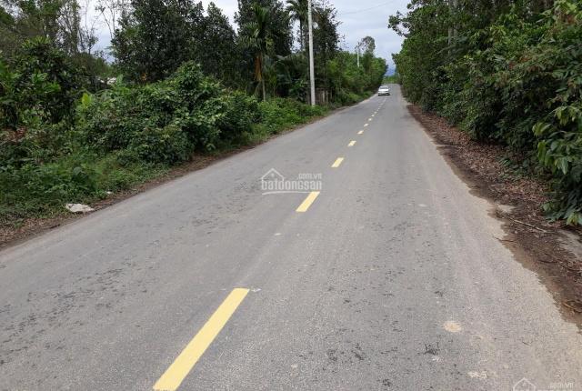 2 hecta đất rừng sản xuất không có đất ở, đẹp, Hòa Phú, 0972.355.247