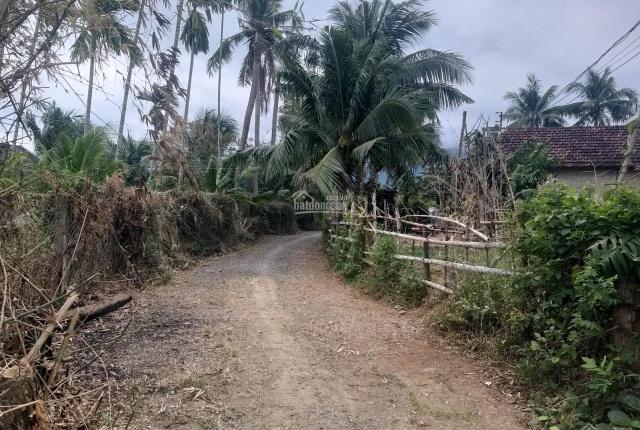 Đất thôn Thạnh Mỹ, xã Ninh Quang, thị xã Ninh Hòa. Giá 450tr