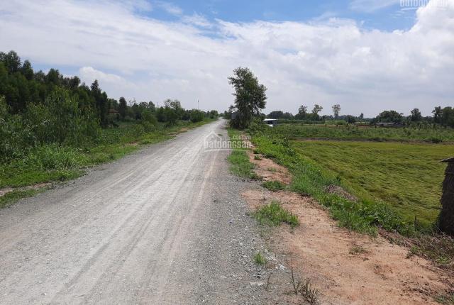 Chính chủ cần bán đất mặt tiền Long An, huyện Thanh Hóa, xã Tân Hiệp, lộ cập Kênh 61, DT 9225 m2