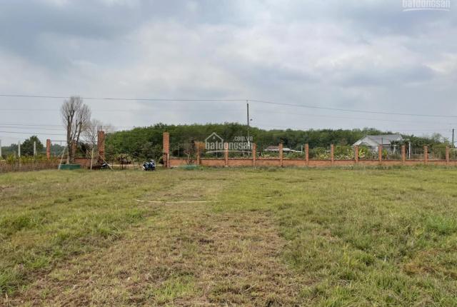 Đất chính chủ DT 8.500m2 cần bán gấp giá rẻ ngay giáp khu dân cư 13 mẫu đường thông thoáng