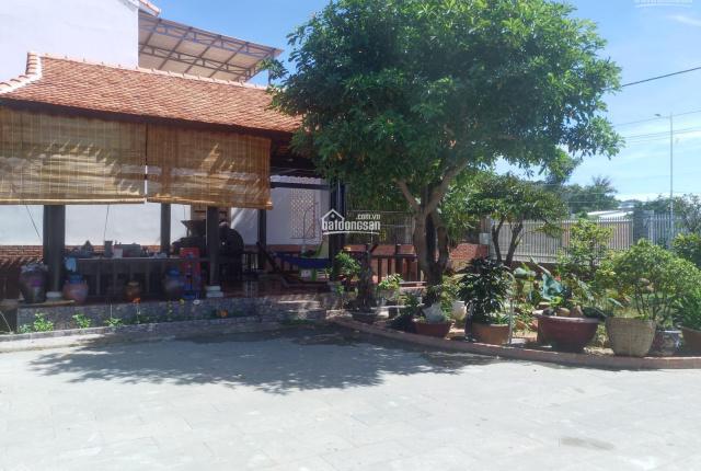 Bán đất đường Nguyễn Tất Thành(đ - 36m), thị trấn Long Hải, Bà Rịa Vũng Tàu