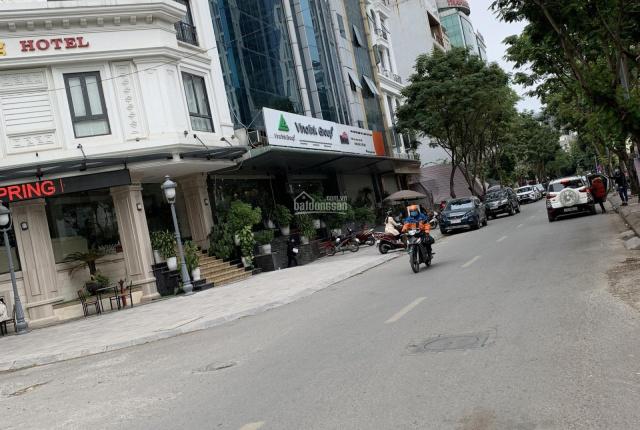 Chính chủ cho thuê mặt bằng kinh doanh mặt phố Dịch Vọng 130m2 mặt tiền 12m vị trí siêu kinh doanh