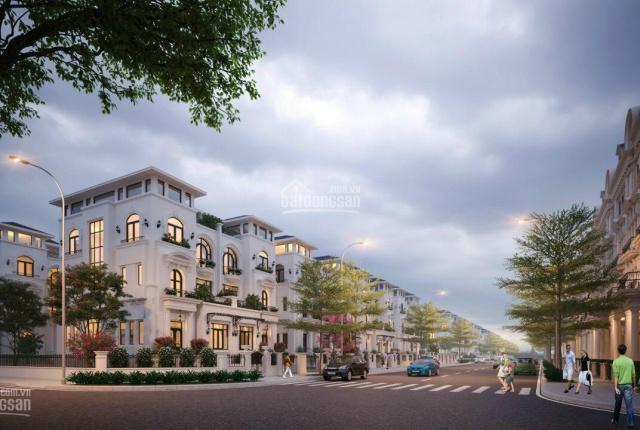 Bán biệt thự Louis City Hoàng Mai, siêu phẩm cho khách đầu tư