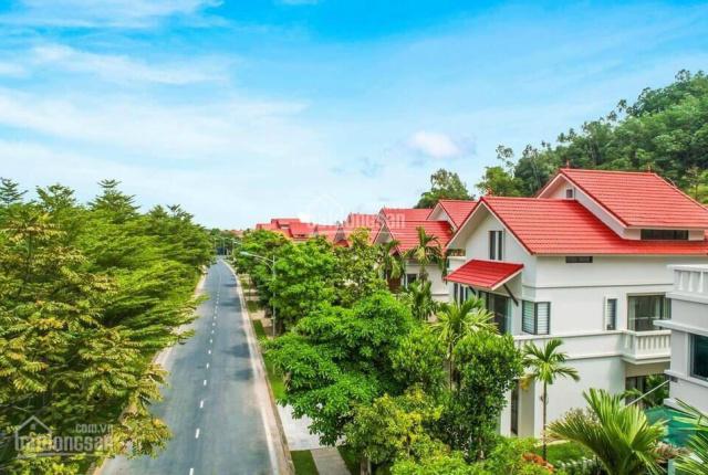 Xanh Villas ra mắt khu C 200 căn biệt thự giới hạn. Dt 200 - 500m2, hỗ trợ vay 0% lãi suất