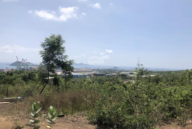 Hơn 4ha đất rừng SX sẵn cây xà cừ -có QH Nam Vân Phong xin chuyển đổi lên đất TMDV 1,1tỷ/ha