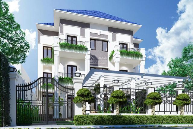 Bán biệt thự Nguyễn Văn Linh, Bình Thuận, Q7 nội thất cao cấp. DT đất: 17x25m