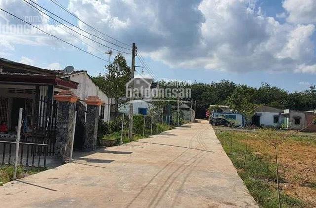 Chính chủ bán đất giáp Sân Bay Long Thành, sát cao tốc Long Thành Dầu Giây