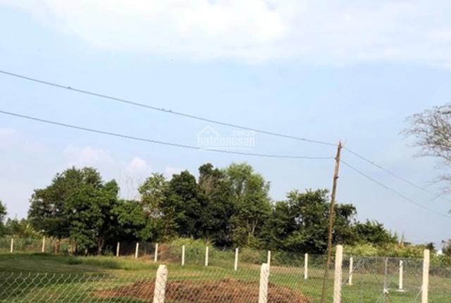 Bán lô đất 1336m2, thổ cư 144m2, ấp Giồng Lớn, xã Mỹ Hạnh Nam, huyện Đức Hòa, tỉnh Long An