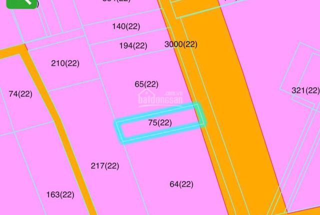 Bán dãy trọ 5 phòng thu nhập 5 tr/th ở trung tâm TDM, sau lưng sân banh Gò Đậu Bình Dương 2,5 tỷ