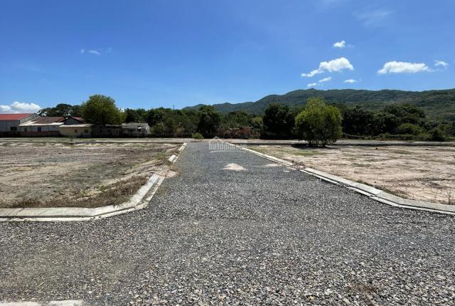 Kẹt tiền tôi cần bán nhanh lô đất 598m2 đường Vành Đai 4 rộng 72m, xã Tân Hòa, TX Phú Mỹ, BRVT
