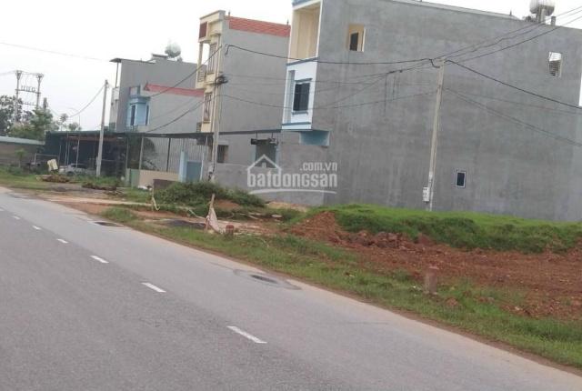 Cần tiền bán nhanh ô đất kinh doanh 2 mặt tiền tại khu phân lô rau sạch Minh Quang, Tam Đảo