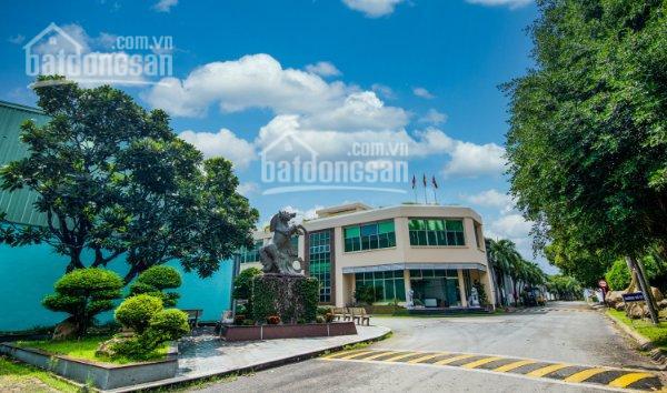 Công ty Hữu Toàn cho thuê kho chung tại Thuận An, Bình Dương